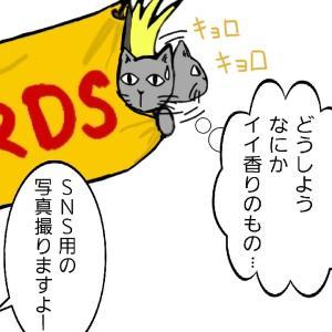 イッツ・ア・ニャウ!2(BUCK-TICKマンガ)