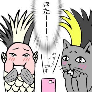 群馬の3B☆BUCK-TICKのアニイがゲストのFM群馬を聞いたよ!(や~しのき~♪🌴)