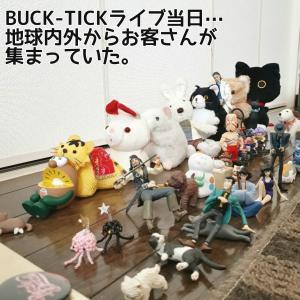 BUCK-TICKランダムぬいぐるみバッチが可愛いから家にあるものを駆使して遊び倒す!その6「BUCK-TICKライブ!~物販~」