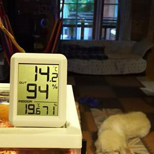 山小屋通信!0925(金)霧雨&強風