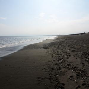 海点描、マイクロプラスチックの問題として人工芝を考える