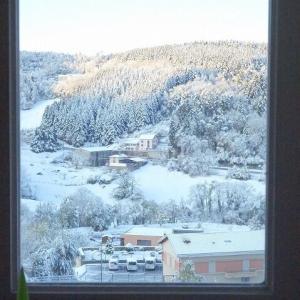 フランス初雪