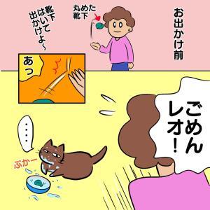 猫の飲み水に靴下がボチャン