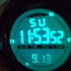 楽天スーパーセールでまた安い腕時計を買いました