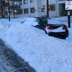 スノーストーム初体験|猛吹雪で小学校は休校。モントリオールの冬