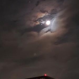 久しぶりな月