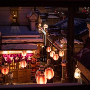 小樽の夜の撮影スポット3選!小樽運河と、出抜小路と、〇〇が熱い!