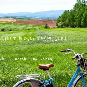 札幌に移住して1年たったので感想を話します。メリットデメリットも。