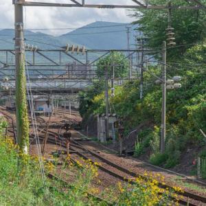 【北海道】札幌で2年半ほど車なし生活してみた。旅行もできるし意外と快適な件