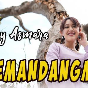 HAPPY ASMARA - MEMANDANGMU