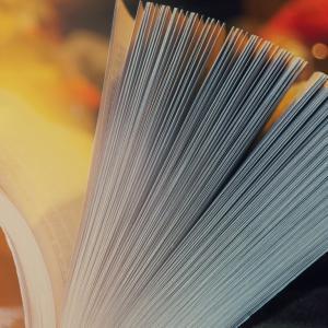 【都内】本好きが選ぶオススメの本屋さん、カフェ、図書館まとめ。