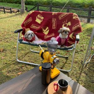 キャンプで美味しいコーヒーを飲みました