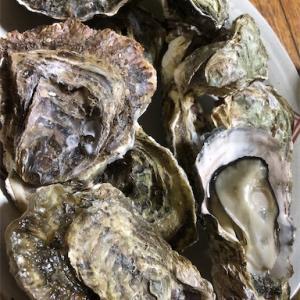 牡蠣の夕食