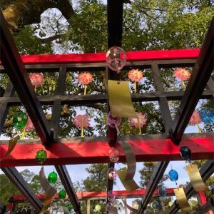 太宰府の夏まつり 夏越祭