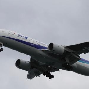 東京湾の船上から飛行機見学