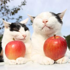 昂林 りんご