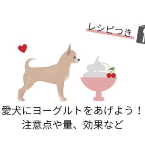 愛犬にヨーグルトをあげよう!1日の量や効果、愛犬におすすめのヨーグルとレシピ例も!