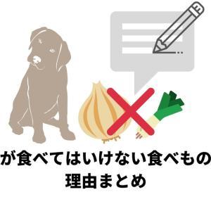 【どうしてダメなの?】犬が食べてはいけない食べものの理由まとめ