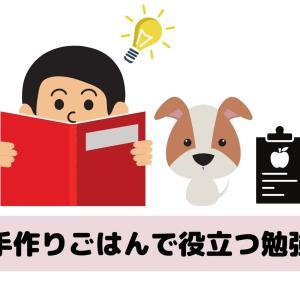 犬の手作りごはんで絶対役立つ勉強教室【本気で学びたい人へ】