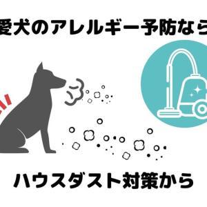 愛犬のアレルギー予防ならハウスダスト対策から