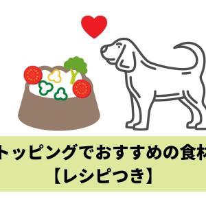 犬のトッピングでおすすめの食材27【レシピつき】