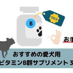愛犬におすすめのビタミンB群サプリメント4つ【値段重視】