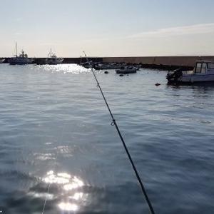 美浜の海で のんび~り魚釣り ~知多半島美浜町 ~