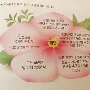 韓国の憲法のお勉強。