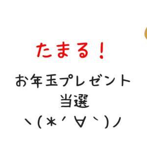 【当選経験有】「たまる!」お年玉プレゼント2020!旅行券が当たる