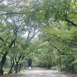日本で初めてラクビーをやった場所!知ってます?