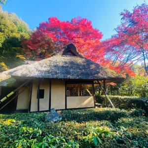 京都紅葉 金福寺2