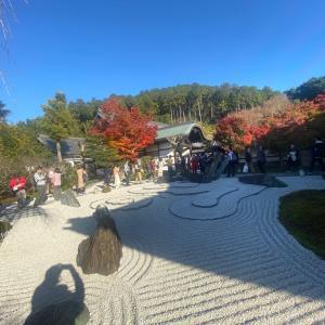 私の大好きな京都紅葉スポット 圓光寺