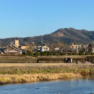 京都 鴨川散歩~♪