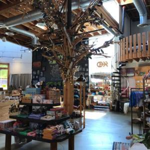 カリフォルニアCosta mesaにあるThe Campと言うお店
