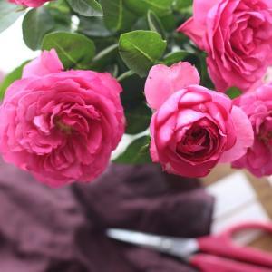 【やまようセレクト花材】チャーミングなM様へお届けしました。