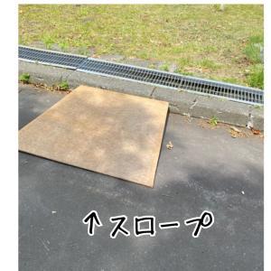 運動会など^_^