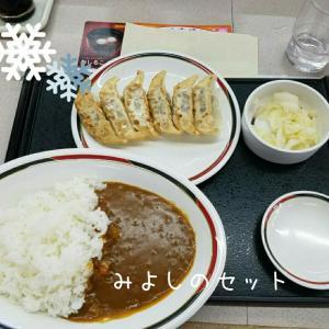 カレーと餃子!?【みよしの】@栄町店