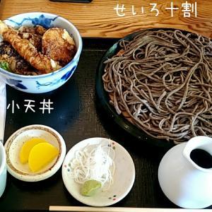 ニセコでお蕎麦♪【手打ち蕎麦いちむら】@倶知安町