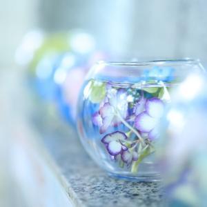 手稲神社☆紫陽花ガラスボール