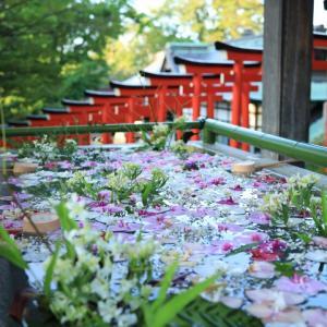 そうだ小樽に行こう ☆住吉神社の花手水