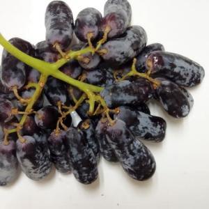 細長い葡萄