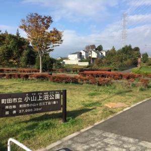 町田市立 小山上沼公園