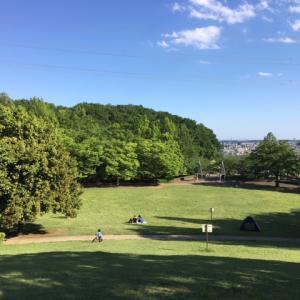 町田市立 真光寺公園