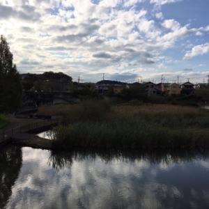 町田市立 広袴公園