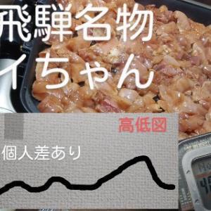 南飛騨けいちゃん焼~山岳センバル5本 連続ラン挑戦856日目