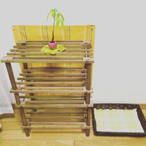 おもてなし空間を作りました♡パーソナルレッスンは自宅サロンにシフトしてお迎えします