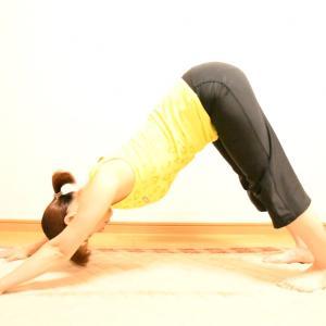 原因不明の身体の痛みは、筋肉のバランスの影響かも知れません。