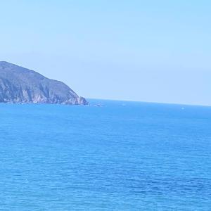 お天気の良い日は、織幡宮からは、「神宿る島」沖ノ島を拝む事ができる。