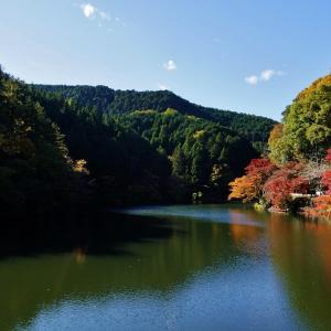 鎌北湖 最後の紅葉