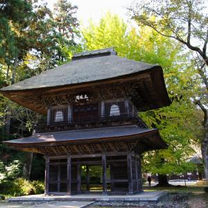 あきる野市 広徳寺の大銀杏